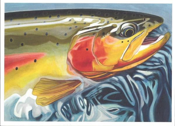 Green Cutthroat Trout Upper Green Cutty – Cutthroat